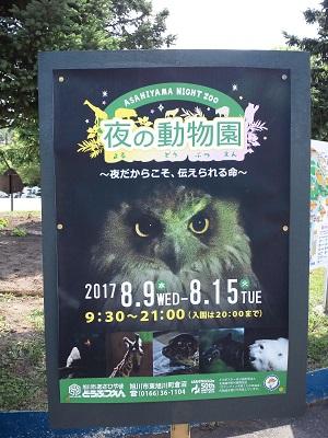 asahiyama_yoru.jpg